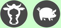 icône vache et porc