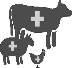 icône bétail